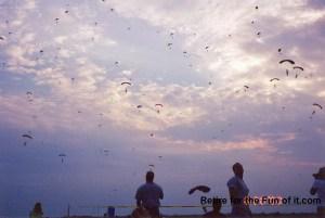 300 Way Skydive